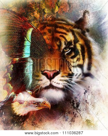 tiger with eagle and ornamental mandala and butterfly,  wildlife animals on painting background, Eye