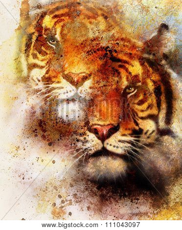 tiger collage on color abstract background and mandala with ornament, painting wildlife animals and