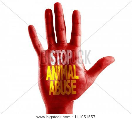 Stop Animal Abuse written on hand isolated on white background