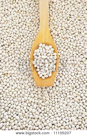 Wooden spoon and dried white navy beans