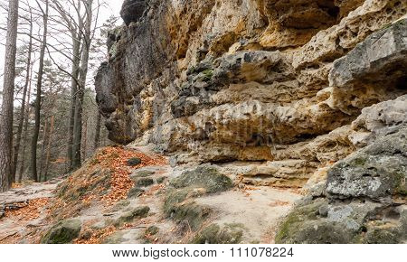 Stone In Bohemian Switzerland
