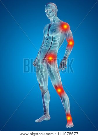 3D human or man with muscles for anatomy or health designs with articular or bones pain. A male on blue background