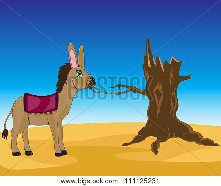 Vector illustration of the burro in sand desert