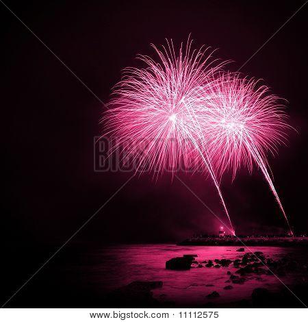 Magenta Fireworks