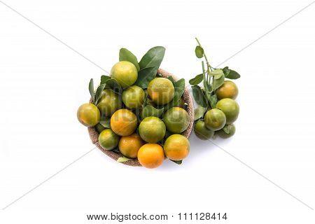 Fresh Orange In Sack