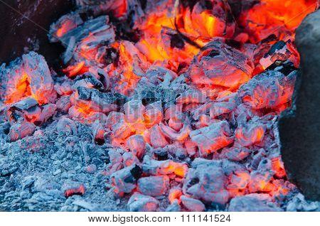 Glowing Embers Campfire Closeup