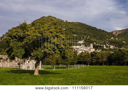 Panoramic View Of Gubbio, Italy