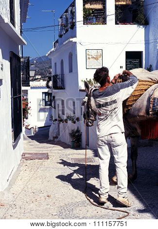 Man and donkey in Frigiliana.