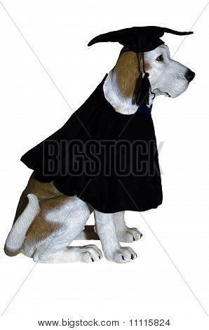 Graduation Dog Statue