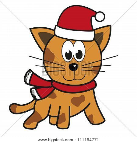 Kitten (cat, Tiger) With Santa's Hat And Festive Apparel