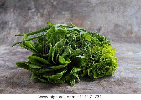 Green Romaine Lettuce, Cos