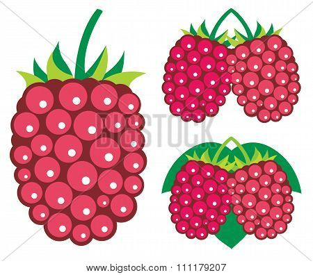 Raspberries Vector Illustrations