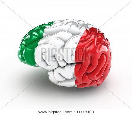 Italy Brain