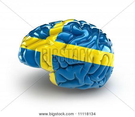 Sweden Brain