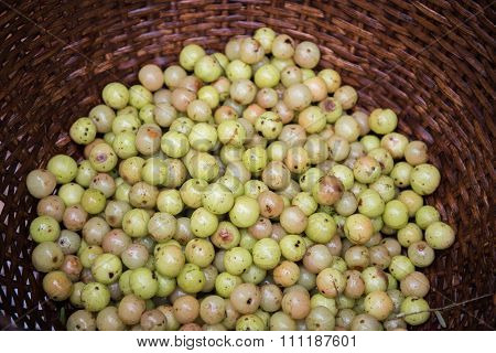 Indian Gooseberry in Basket