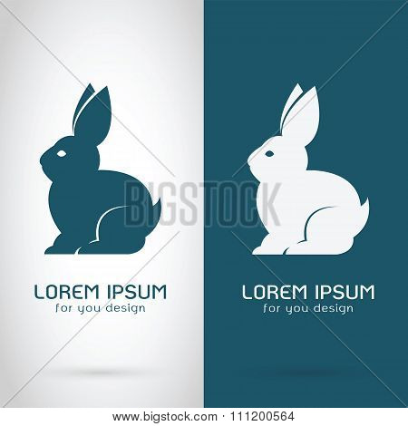Vector Image Of A Rabbit Design On White Background And Blue Background, Logo, Symbol,  Banners