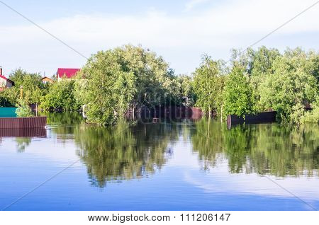 Flooded Houses And Trees