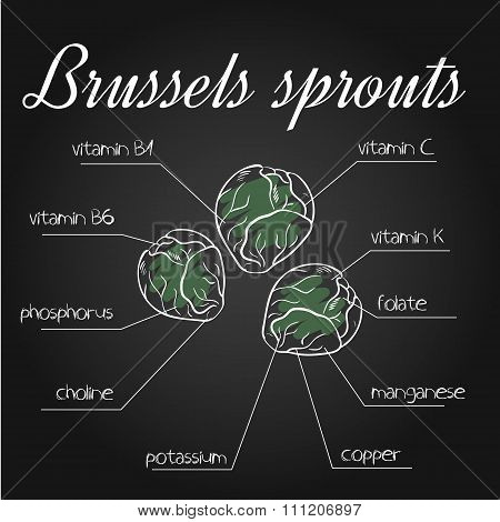 Vector Illustration Of Nutrients List For Brussels Sprouts On Chalkboard Backdrop