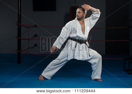 Black Belt Karate Expert With Fight Stance