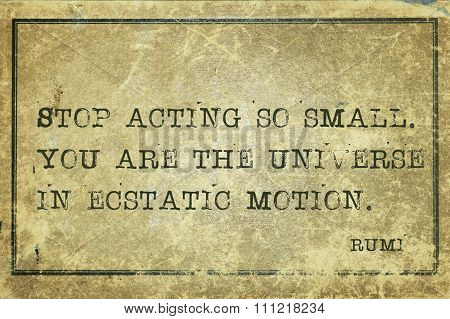 Act So Small Rumi