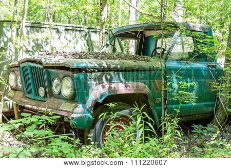 Old Green Jeep In Woods