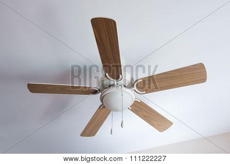Modern Electric Ceiling Lamp Fan