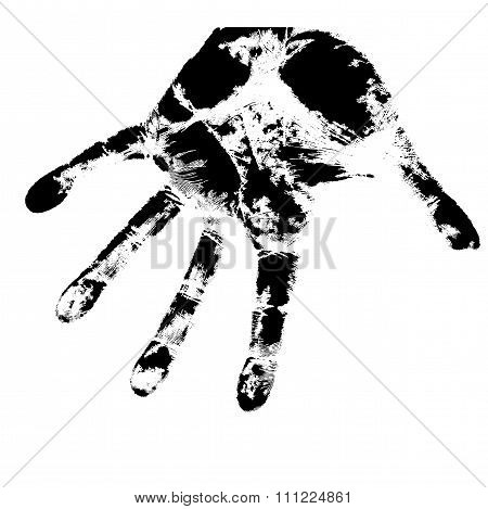 Hand Print, Skin Texture Pattern, Vector Illustration.