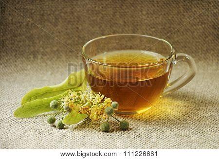 Glass Cup Of Tea. Linden Flowers. Herbal Tea.