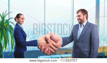 Businesswoman and businessman handshaking in the office