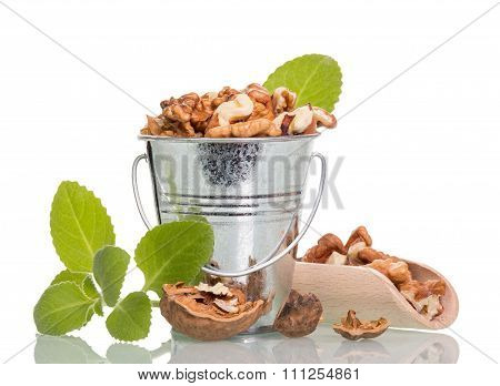 Nuts in bucket and scoop