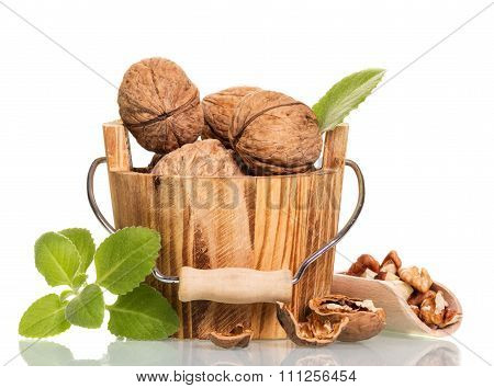 Walnuts in wooden bucket