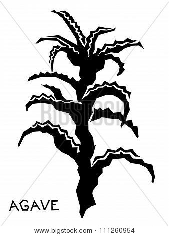 Agave Isolated Silhouette On White Background. Vector Illustration For Your Cute Design.