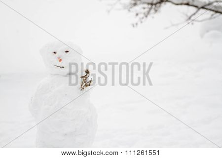 Ugly Snowman With Copy Space
