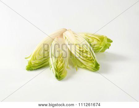 halved heads of fresh belgian endive on white background