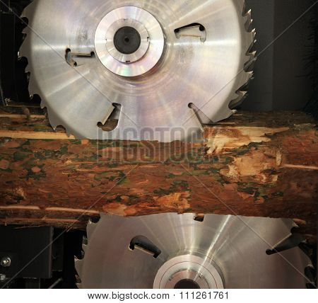 Circular Saw Cut Wood