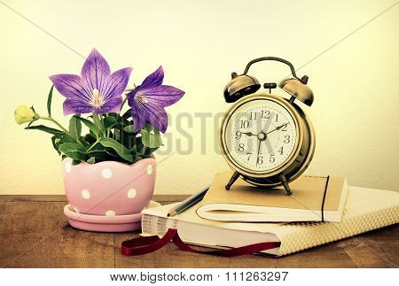 Purple Balloon Flower Or Platycodon Grandiflorus Flower In Cute Pot  ,a Vintage Alarm Clock  And Dia
