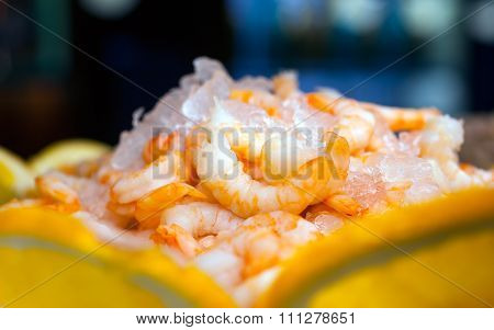 Shrimp With Ice