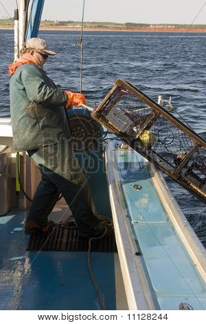 Lobster Fisherman