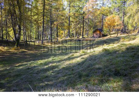 Log Cabin In Autumn Woodland In The Alps