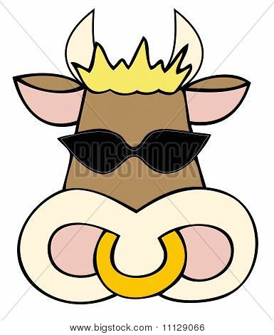 Dairy cow face with sunglasses.