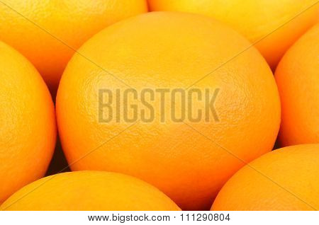 Orange Fruit, Close Up