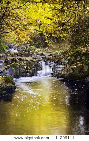 Soanan River In Autumn Season, Beaujolais, France
