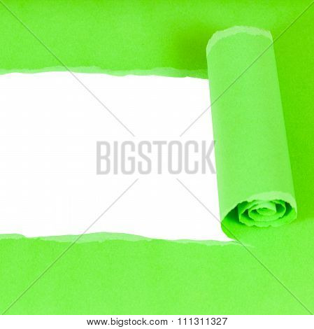 Bottom View Of Green Rolled-up Torn Paper