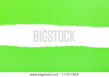Divided Halves Of The Sheet Of Green Ripped Paper