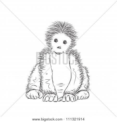 Sketchy Gorilla Vector Illustration