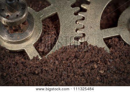 Macro Gear Mechanism