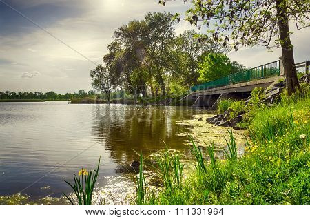 Summer landscape - bridge over the lake