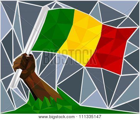 African Man Hand Raising The Flag Of Mali