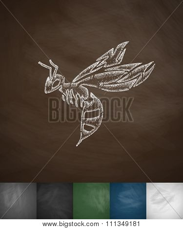 wasp icon. Hand drawn vector illustration