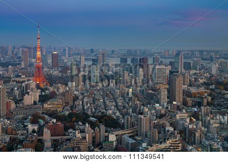Tokyo city aerial view with Tokyo Tower after sunset, Japan